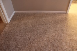 this new carpet feels amazing